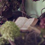 1º PASO – Necesitas conocer las causas de tu malestar: Registros Akáshicos